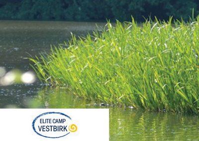 Elite Camp Vestbirk